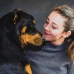 chăm sóc chó Rottweiler