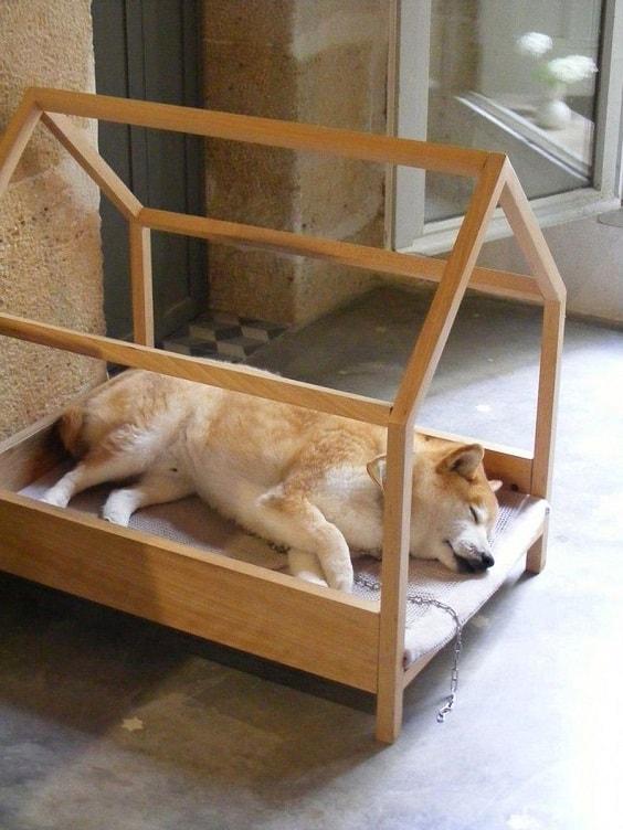 mẫu nhà cho chó