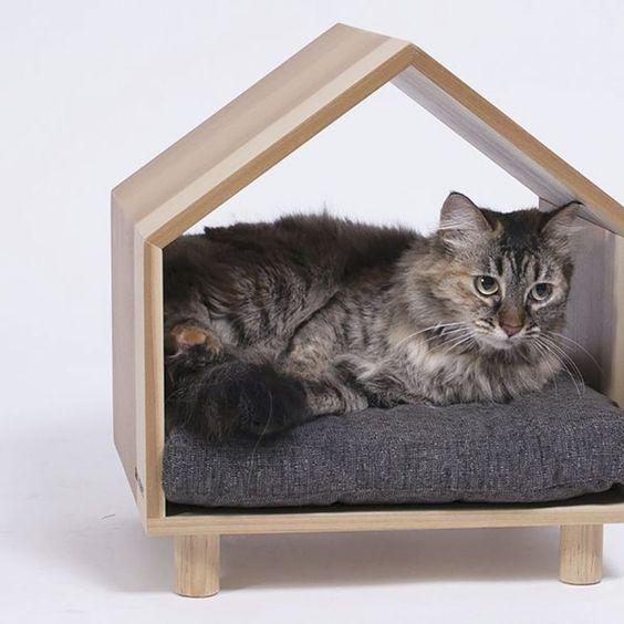 nhà cho mèo giá rẻ