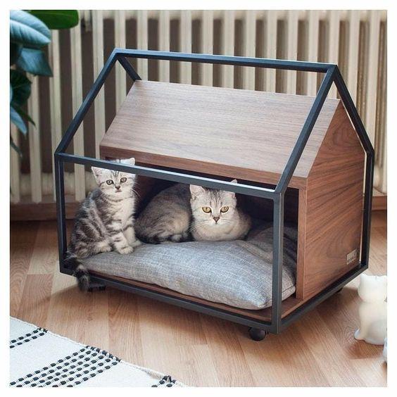 nhà cho mèo ở