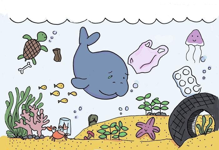 Mối Nguy Cơ Của Bò Biển
